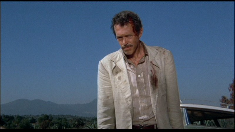 Sam Peckinpah  Bring Me the Head of Alfredo Garcia_full2